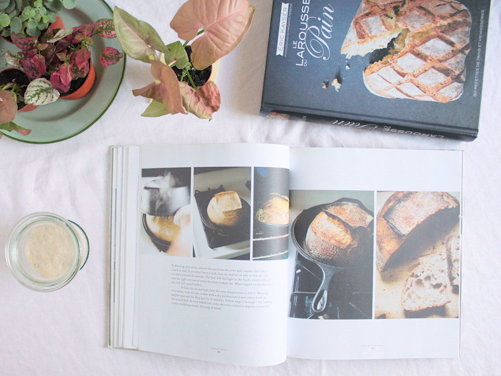 Sourdough bread book